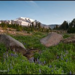 Mount Adams and Bird Creek Meadows