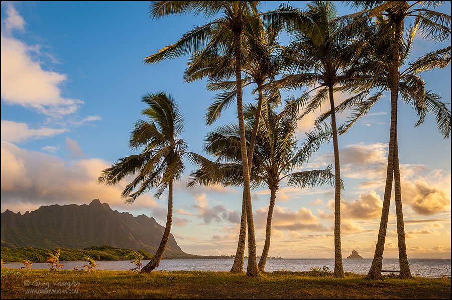 View of Windward Oahu at sunrise